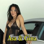 Gina Lynn & Asa Akira Top Notch Bitches 5 DVDR Video