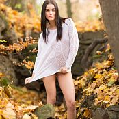 Image works Domi Autumn Picture Set & HD Video