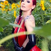 Susan Wayland Shiny Flower World Picture Set 2