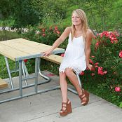 Madden Picnic Table Picture Set