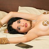 Clarina Ospina Wild Kitty TM4B Picture Set 013
