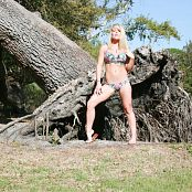 Madden Big Tree Picture Set