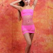 Silver Jewels Alice Pink Mesh Picture Set 1