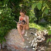 Petal Stone HD Videos 332 – 334