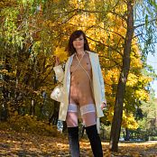 Jeny Smith Autumn Picture Set