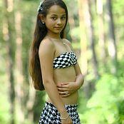 Silver Stars Sabina Checkers Picture Set 001