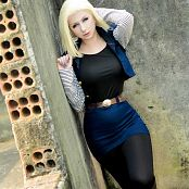 Giu Hellsing Android 18 Picture Set