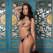 Azly Model Gold Stickers AZM Picture Set 042
