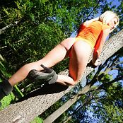 Madden Sheer Wood Picture Set