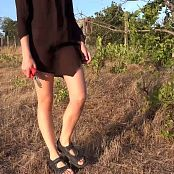 Petal Stone HD Video 392 & 393