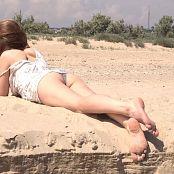 Petal Stone HD Video 400