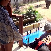 신데렐라 스토리 신데렐라 Girl Walk With an Elephant HD Video 001