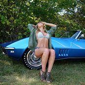 Madden Blue Vette Picture Set