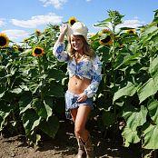 Madden Sunflower Field Picture Set