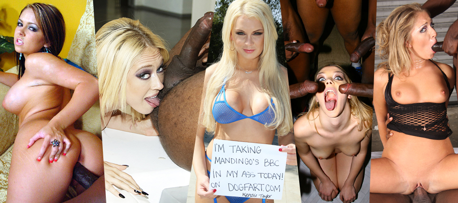 Download BlacksOnBlondes Pornstars Picture Sets Complete Siterip