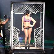 Download Britney Spears Hot Ass Show Circus Tour 2009 HD Video