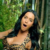 Download Katy Perry Roar ProRes Music Video