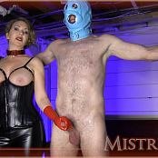 Download Mistress T Monthly Milking Reward For Twisted Slave HD Video