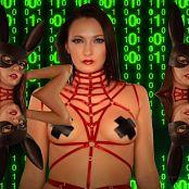Bratty Bunny Bunny Hacker HD Video