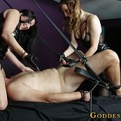 Goddess Alexandra Snow and Madison Volt Milking The Slave Cow 1080p Video 010320 ts