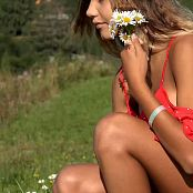 Two Foxes HD Video 084 100520 mp4