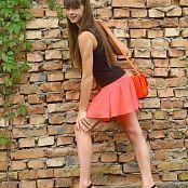 Silver Stars Eva Orange Skirt Set 001 015