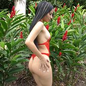 Clarina Ospina Red Flowers TCG 4K UHD Video 017 250820 mp4