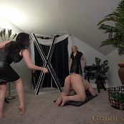 Goddess Alexandra Snow Screams of Pain 1080p Video ts 031120 mkv