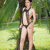 Dulce Garcia Black Sheer V Cut TCG Bonus Level 2 Set 016 tcg bonuslevel 02 016 1