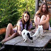 Cinderella Story Juliet Summer With Kittens Set 002 004
