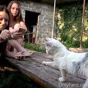 Cinderella Story Juliet Summer With Kittens Set 002 008