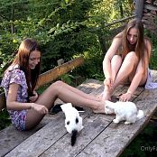 Cinderella Story Juliet Summer With Kittens Video 002 101021 mp4