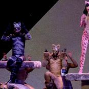Katy Perry Unknown Song6 Live The Prismatic World Tour 2015 HDTV 26041554793401mkv 00005
