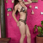 Mary Mendez Animal Print One Piece TeenBeautyFitness Set 119