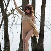 Ariel Rebel Nature Morte 002