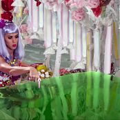 Katy Perry California Girls HD 040217 ts