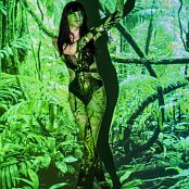 Silver Starlets Shiki Jungle Set 1 1401