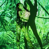 Silver Starlets Shiki Jungle Set 1 1534