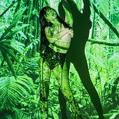 Silver Starlets Shiki Jungle Picture Set 1