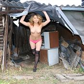 Silver Pearls Viki Old Shed Picture Set 2