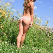 Madden Sunflower Fields 083