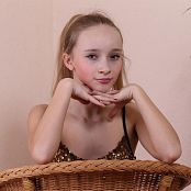Silver Starlets Alice Gold Set 2 0210