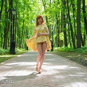 Jeny Smith Sunny Dress Picture Set