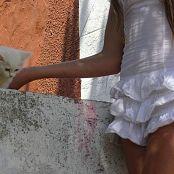 Wild Kitty Set 27 072