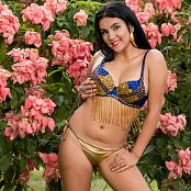 Veronica Perez Glittery Blue & Gold TCG Picture Set 002