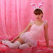 Silver Stars Eva Bunny Set 1 302