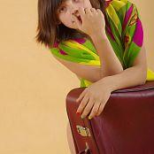 Silver Starlets Nika Luggage Set 1 3647