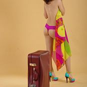 Silver Starlets Nika Luggage Picture Set 1