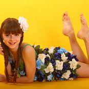 Silver Stars Eva Flowers Set 1 457