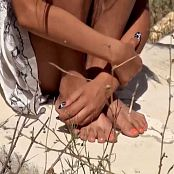 Steppe Flower HD Video 282 080518 mp4